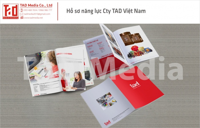 ho so cong ty tad vietnam92